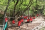 유아숲체험 상반기 프로그램 참여 기관 모집