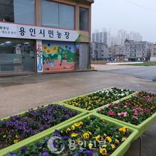새봄, 도시농부 기지개
